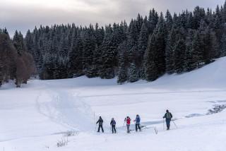 Marche nordique sur neige